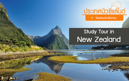 We Study Tour in New Zealand